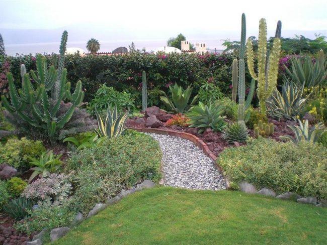 dise o de jardines mexicanos disfruta de cada imagen e On jardines pequenos mexicanos
