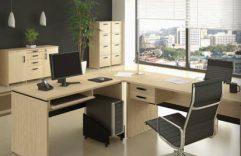 Diseño de escritorios ejecutivos para emplear en tu lugar de trabajo, no dudes en comenzar con una remodelación!