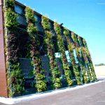 Fachadas verdes y jardines verticales, te enseñamos todo lo que debes saber para poder realizarlo